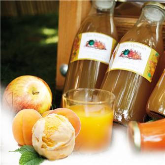 Making and preserving juice