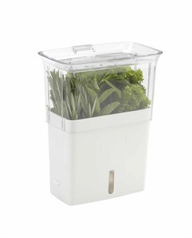 Container for preserving freshly cut herbs