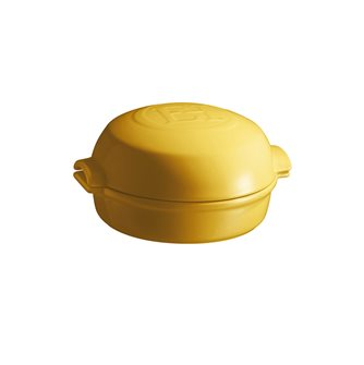 Provence Emile Henry yellow ceramic oven roasted cheese dish