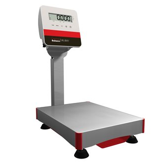 Stainless steel column platform scale 30 kg French manufacture