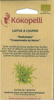 Radichetta Lettuce Seeds / Moroccan Watercress